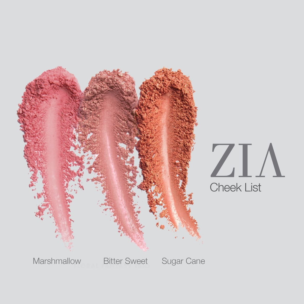 ZIA Cheek List